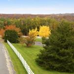 New Road Photo